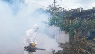Sigue la lucha contra en dengue en Montecarlo