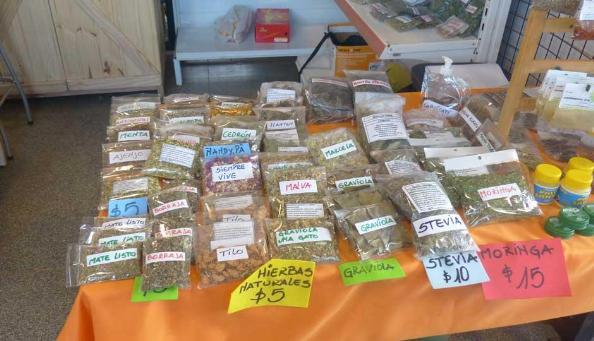 Plantas medicinales negocio con progreso e innovaci n - Como hacer ambientadores naturales ...